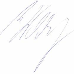 Autogramm von Michael Walchhofer