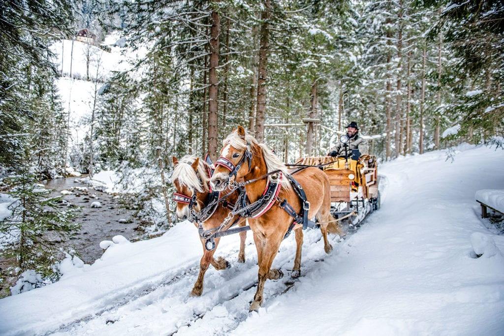 Winterurlaub in Altenmarkt-Zauchensee, Ski amadé